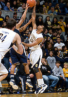 Allen Crabbe of California fights for a loose ball during the game against UC Irvine at Haas Pavilion in Berkeley, California on November 11th, 2011.  California defeated UC Irvine, 77-56.