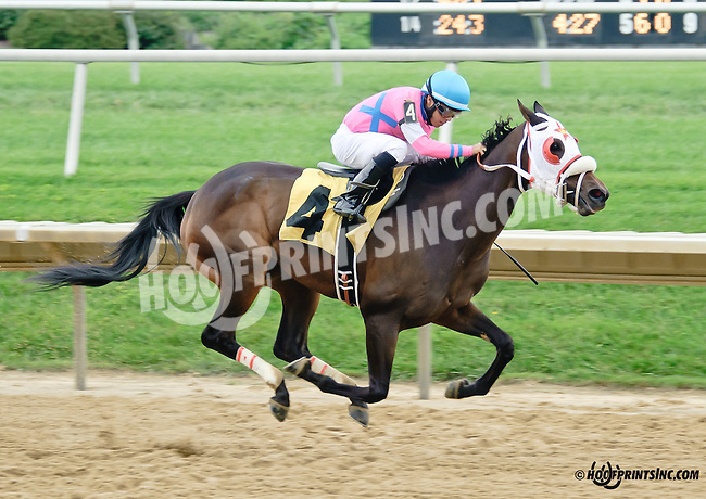 Nocarl winning at Delaware Park on 9/10/14