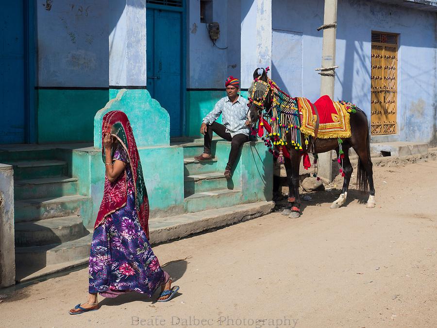 village scene, Narlai, Rajasthan