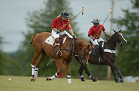 NWA Democrat-Gazette/ANDY SHUPE<br /> Saturday, Sept. 8, 2018, during the 29th annual Polo in the Ozarks at the Buell Farm in Goshen. This event features a polo match, games, vendors, music and food to benefit Life Styles Inc.