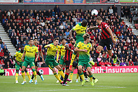 Steve Cook of Bournemouth heads the aerial ball during the Premier League match between Bournemouth and Norwich City at Goldsands Stadium on October 19th 2019 in Bournemouth, England. (Photo by Mick Kearns/phcimages.com)<br /> Foto PHC/Insidefoto <br /> ITALY ONLY