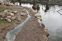 Grundschulklasse, Schulklasse legt einen Schulteich, Schul-Teich, Teich, Gartenteich, Garten-Teich im Schulgarten an, die Uferumrandung wird mit Feldsteinen und feinkörnigen Kies eingefasst, Kapillarsperre