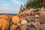 Bass Harbor Head Light in Acadia National Park, Maine, USA