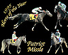 Patriot Missle 1995 Arabian Horse of The Year