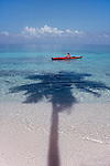 Belize, Lime Cay: Woman sea kayaker, white-sand beach, palm tree, island off the south coast of Belize, released,.