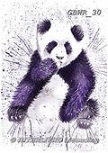 Simon, REALISTIC ANIMALS, REALISTISCHE TIERE, ANIMALES REALISTICOS, paintings+++++KatherineW_SplatterPanda,GBWR30,#a#, EVERYDAY