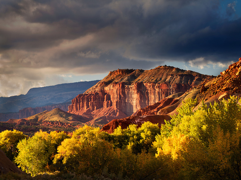 Fall colored Cottonwood Trees and rock formations with storm clouds. Capitol Reef National Park, Utah