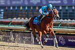 November 3, 2018: Roy H #9, ridden by Paco Lopez, wins the Twinspires Breeders' Cup Sprint on Breeders' Cup World Championship Saturday at Churchill Downs on November 3, 2018 in Louisville, Kentucky. Eric Patterson/Eclipse Sportswire/CSM