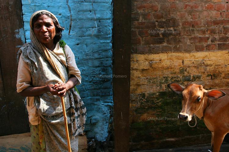 21.10.2006 Varanasi(Uttar Pradesh)<br /> <br /> Woman begging some money and a cow in the street.<br /> <br /> Femme en train de mendier de l'argent et une vache dans la rue.
