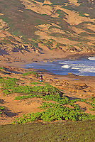 Moomomi Dunes and Beach, Molokai