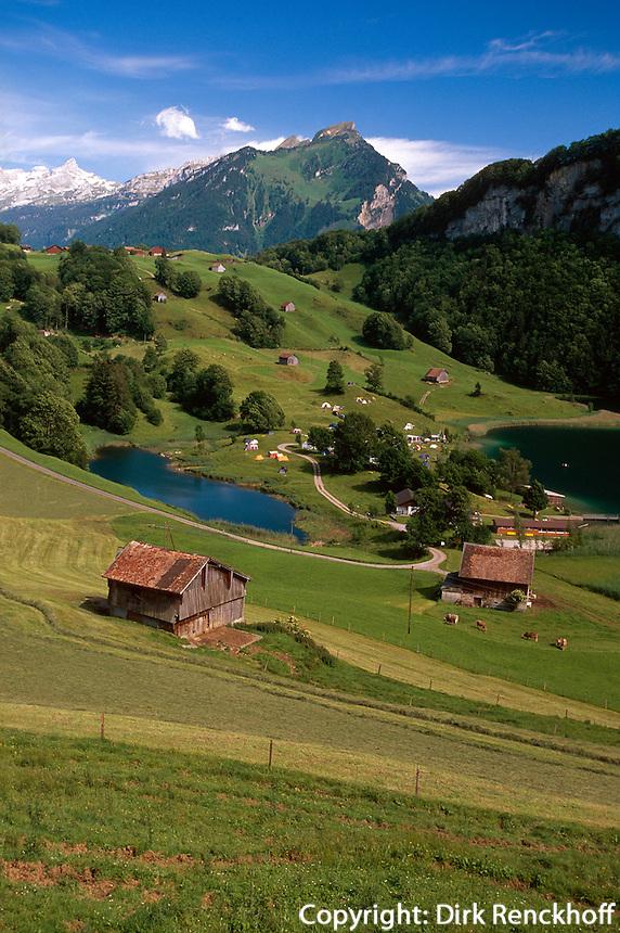 Schweiz, Kleiner See bei Seelisberg am Vierwaldstätter See
