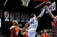 GRONINGEN - Basketbal, Donar New Heroes Den Bosch, kwartfinale NBB beker, seizoen 2018-2019, 14-01-2019, Donar speler Arvin Slagter