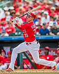 28 February 2019: St. Louis Cardinals fielder Drew Robinson at bat during a Spring Training game against the New York Mets at Roger Dean Stadium in Jupiter, Florida. The Mets defeated the Cardinals 3-2 in Grapefruit League play. Mandatory Credit: Ed Wolfstein Photo *** RAW (NEF) Image File Available ***