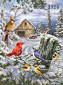 Dona Gelsinger, CHRISTMAS LANDSCAPES, WEIHNACHTEN WINTERLANDSCHAFTEN, NAVIDAD PAISAJES DE INVIERNO, paintings+++++,USGE1710,#xl# ,birds