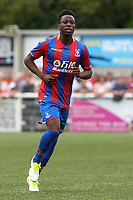 Gio McGregor of Crystal Palace during Maidstone United  vs Crystal Palace, Friendly Match Football at the Gallagher Stadium on 15th July 2017
