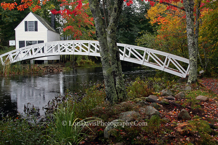 #L35 Autumn At The Somesville Footbridge