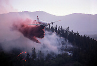 Controlling forest fire from airplane.
