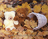 Carl, CUTE ANIMALS, teddies, photos, 2 teddies, leaves, basket(SWLA1682,#AC#)