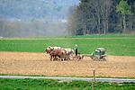 Nippenose Valley. Amish boy seeding ryegrass.