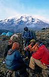 Le Kilimandjaro, toit de l Afrique, culmine à 5895 m. Ces glaces fondent à vue d oeil. La plupart des experts incriminent le rechauffement climatique de la planete qui toucherait en premier lieu les calottes glaciaires situees sous l Equateur. D autres specialistes accusent les mises en culture des versants des montagnes, les incendies et les coupes sauvages. Tanzanie
