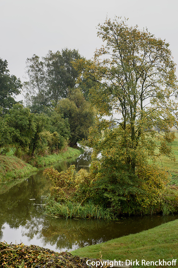 Zufluss der Warta im Nationalpark Warthem&uuml;ndung (Park Narodowy Ujscie Warty), Woiwodschaft Lebus, Polen<br /> tributary of river Warta in National Park (Park Narodowy Ujscie Warty, VoivodshipLebus, Poland