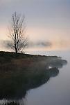 Fog burning off of  Rose Valley Lake