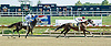 Burnadette's Song winning at Delaware Park on 8/31/10