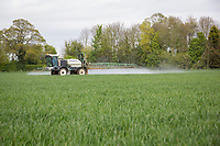 Spraying T1 fungicide onto winter wheat - Lincolnshire, April