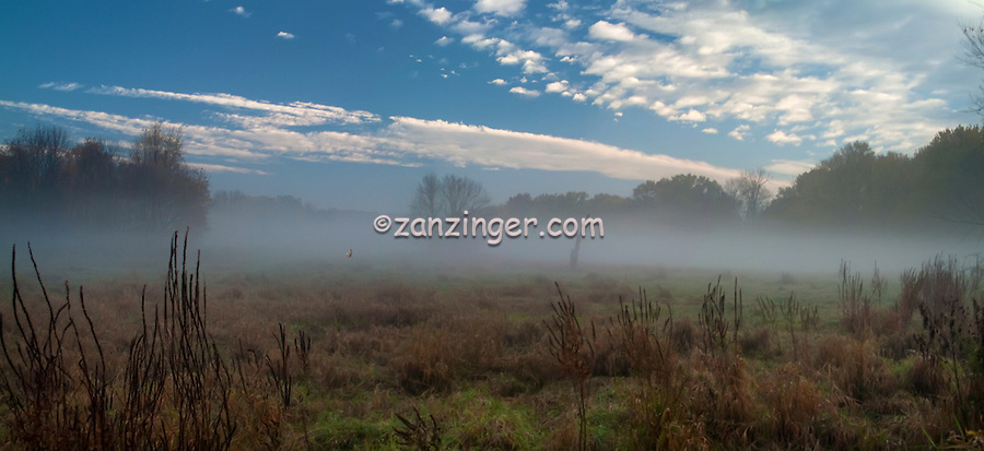 Misty Morning, Philmont, Country Club, Philadelphia, Pennsylvania, US, USA,  fall, leaves, fog, misty, beautiful