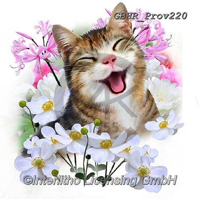 Howard, REALISTIC ANIMALS, REALISTISCHE TIERE, ANIMALES REALISTICOS, paintings+++++Selfie cat 2,GBHRPROV220,#a#, EVERYDAY ,selfies