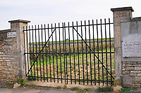 Vineyard. Clos des Poutures, Domaine Lochardet. Pommard, Cote de Beaune, d'Or, Burgundy, France