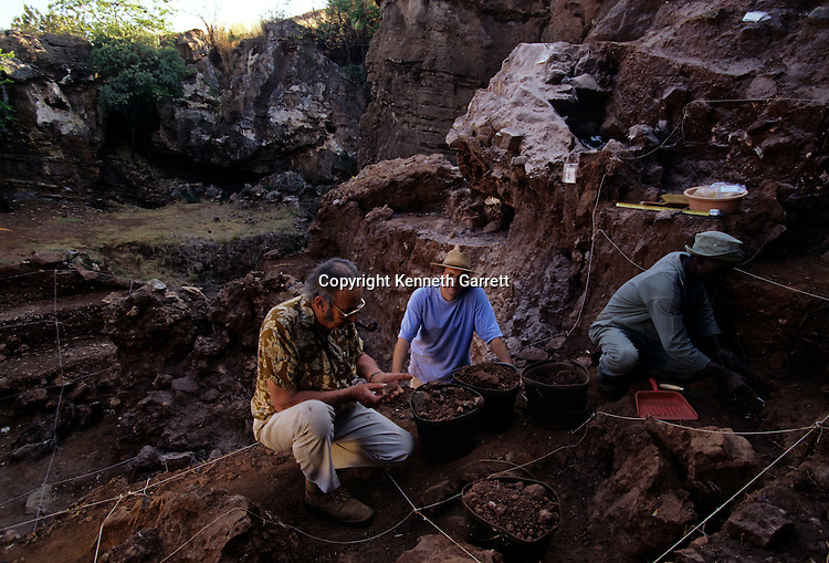 Excavation of Drimolean Site, near Johannesburg, South Africa, 2 million year old hominid