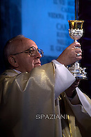 Pope Francis leads a mass on the occasion of All Saints' day  at Campo di Verano cemetery in Rome.on November 1, 2015