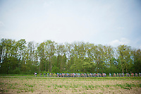 peloton driveby<br /> <br /> Amstel Gold Race 2014