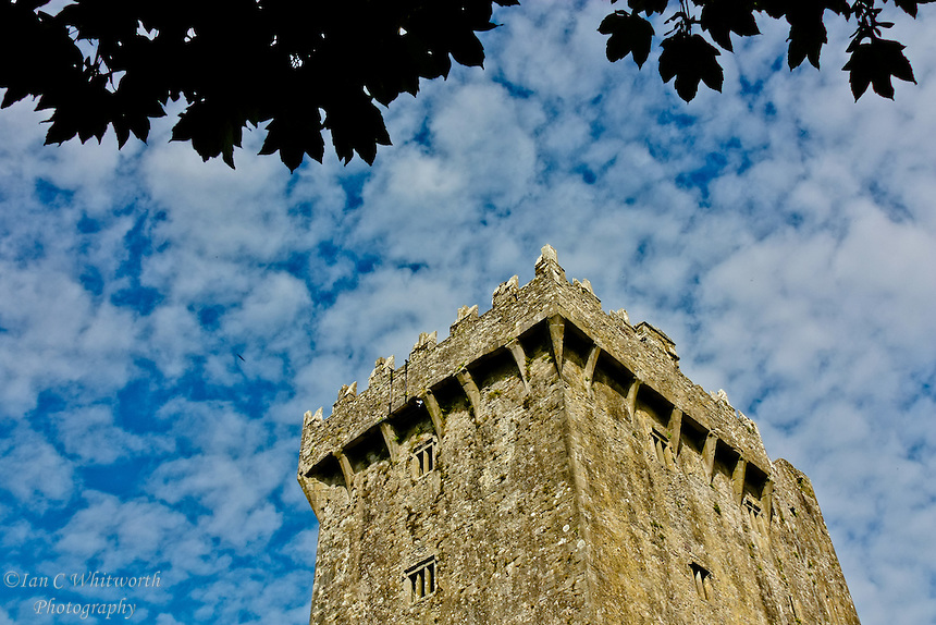Looking up at Blarney Castle