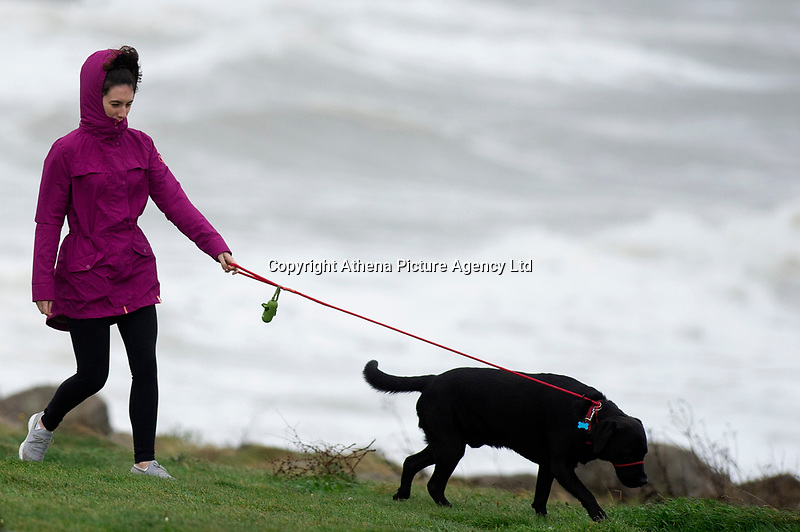 Pictured: A woman walks her dog in the strong wind in Porthcawl, south Wales, UK. Wednesday 19 September 2018