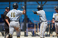 GCL Pirates right fielder Jeremias Portorreal (16) is congratulated by Christopher Perez (10) after hitting a grand slam home run in the top of the eleventh inning during a game against the GCL Blue Jays on July 20, 2017 at Bobby Mattick Training Center at Englebert Complex in Dunedin, Florida.  GCL Pirates defeated the GCL Blue Jays 11-6 in eleven innings.  (Mike Janes/Four Seam Images)
