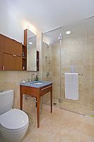 NYC Bathroom Interior