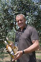 Europe/France/2A/Corse-du-Sud/Porto-Vecchio: Angelo Guazzelli producteur d'huile d'olive au milieu de ses oliviers dansle village de La Porta - Huiles vendues par Terra Rossa 8 rue du General de Gaulle à Porto-Vecchio