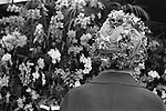 Chelsea, London. 1969<br /> An anthophile in a floral hat admires a stand of Narcissi at the Chelsea Flower Show.