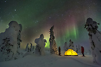 Two campers watch the northern lights  by yellow tent at a winter camp in the boreal forest, Interior, Alaska.