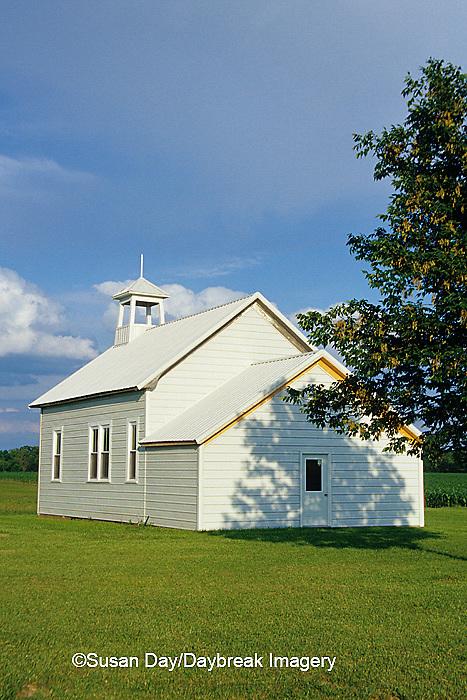 63804-01206 Allen's Schoolhouse near Kinmundy, IL