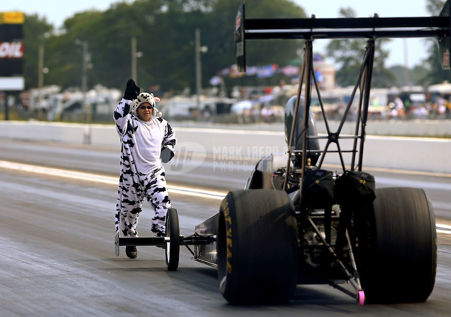 Aug. 18, 2013; Brainerd, MN, USA: Crew member for NHRA top alcohol dragster driver Gord Gingles dressed as a cow backs him up during the Lucas Oil Nationals at Brainerd International Raceway. Mandatory Credit: Mark J. Rebilas-