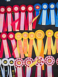 Horse show prize ribbons.<br /> <br /> Saturday, Day 3 of the 79th Amador County Fair, Plymouth, Calif.<br /> <br /> Local cowboy ranch rodeo, livestock beauty pageant, youth tractor rodeo, Mutton Bustin' finals<br /> <br /> <br /> #AmadorCountyFair, #PlymouthCalifornia,<br /> #TourAmador, #VisitAmador