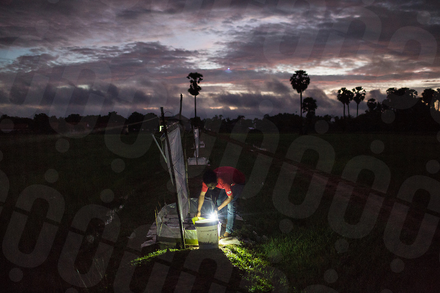 June 03, 2014 - Kampong Thom, Cambodia. A man tends to his cricket catching nets in the early mornings. © Nicolas Axelrod / Ruom