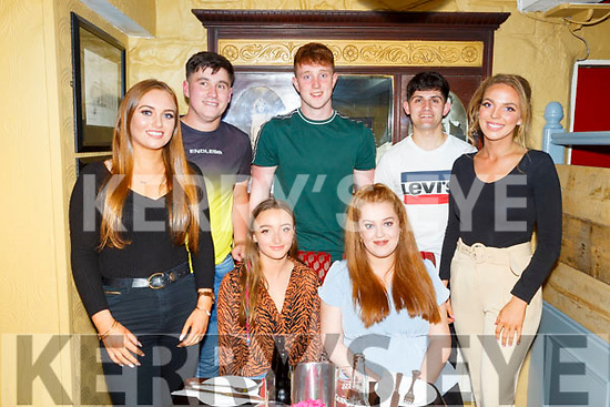 Enjoying a night out in the Brogue Inn, Tralee on Friday were seated l-r: Mébh Moloney, Aoife McDonnell. Standing l-r: Susan Mason, Philip Flaherty, Mark McDonnell, Shane Lee and Roisin Lynch.