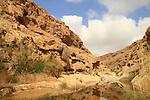 Israel, Negev, Ein Tzafit in Nahal Tzafit