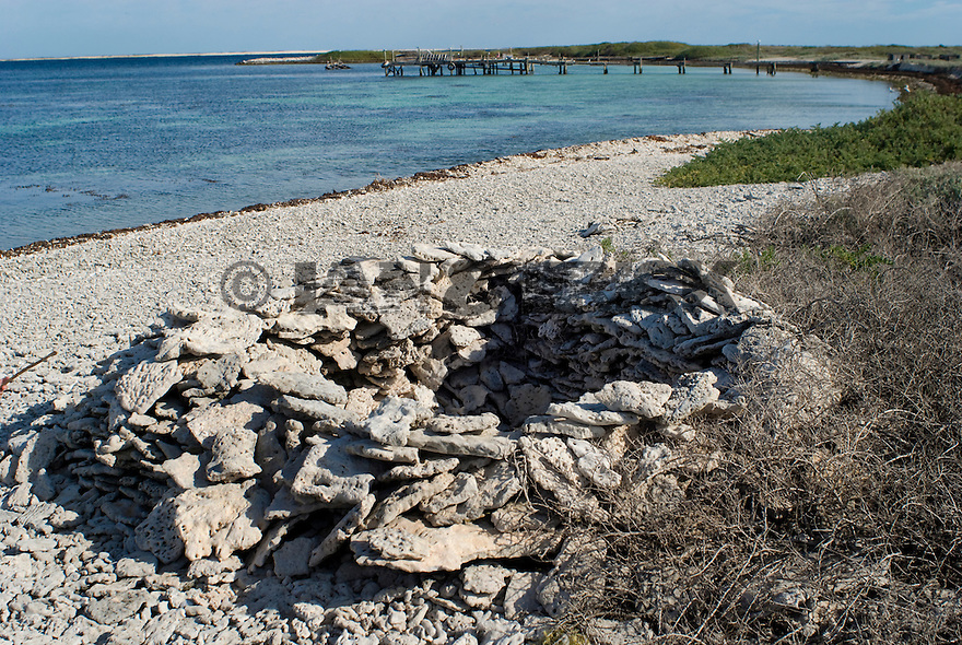 The first ever prisoner in Australian History digged himself a whole on the coral beach to protect himself from the conditions on Beacon Island in the Abrohlos, Western Australia