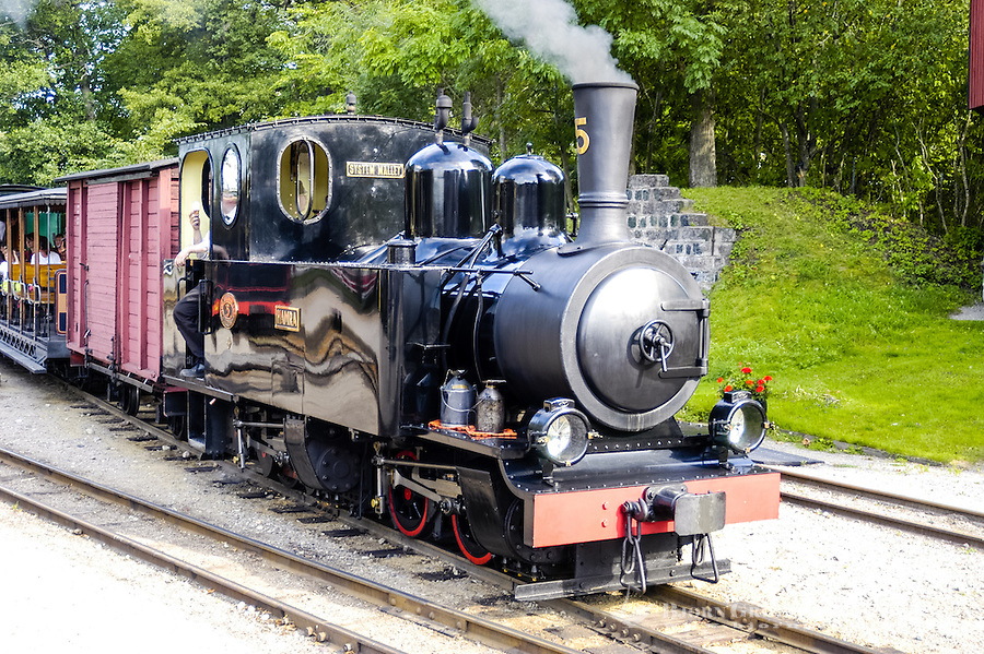 Sweden, Mariefred. Railway museum with old steam locomotive..