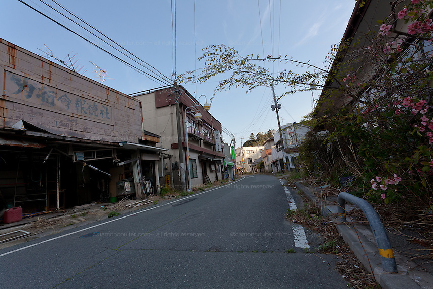 Empty overgrown streets in the town of Tomioka, Futaba District of Fukushima, Japan. Monday April 29th 2013. The town was evacuated on March 12th after the March 11th 2011 earthquake and tsunami cause meltdowns at the nearby Fukushima Daichi nuclear power station. It lies well within the 20 kms exclusion zone though parts of the town have recently been opened again to allow locals to visit their property during daylight hours.